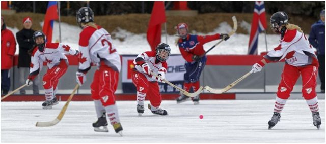 Как делать ставки на хоккей с мячом – стратегия, правила, прогнозы